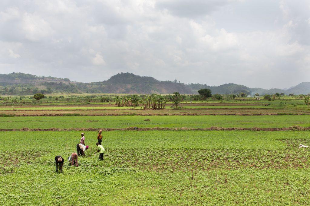 © Herzau/Welthungerhilfe, Liberia